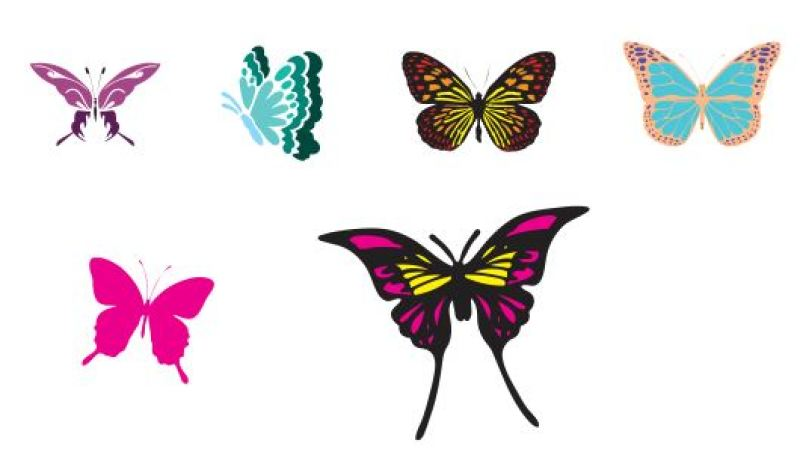 Butterfly Svg File By Kerry Hickox Thehungryjpeg Com