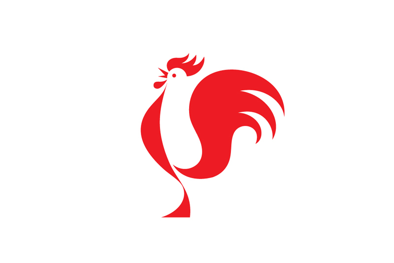 big red rooster designed - 800×533