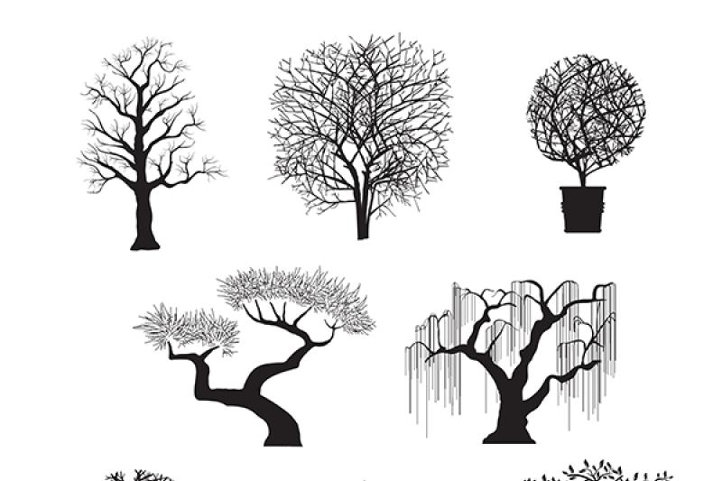 Set Of Tree Silhouettes By Alexzel Thehungryjpeg Com