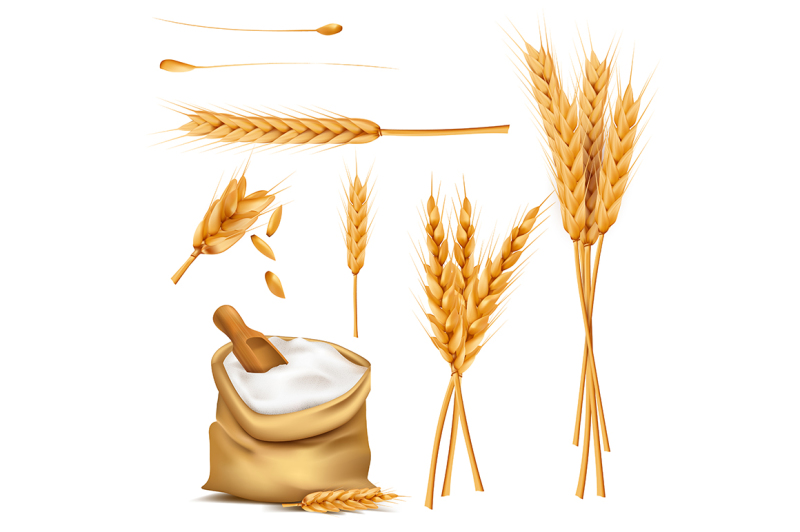 Wheat Ears Grains And Flour In Sack Vector Set By Super Duper