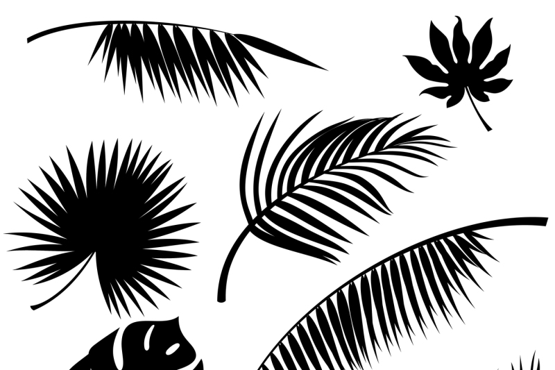 Tropical Leaves Vector By Microvector Thehungryjpeg Com Vector tropical floral botanical flowers. tropical leaves vector by microvector