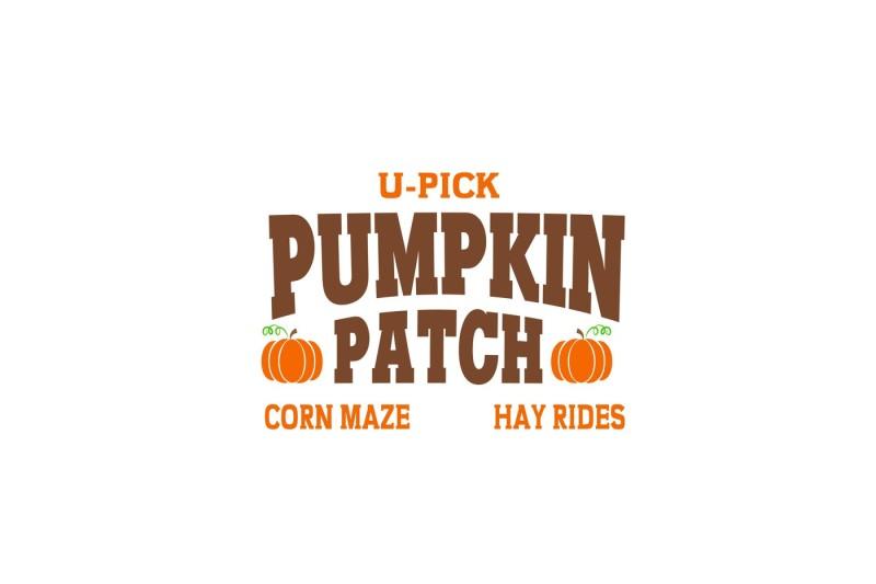 Free Pumpkin Patch Svg Crafter File Free Svg Cut Files