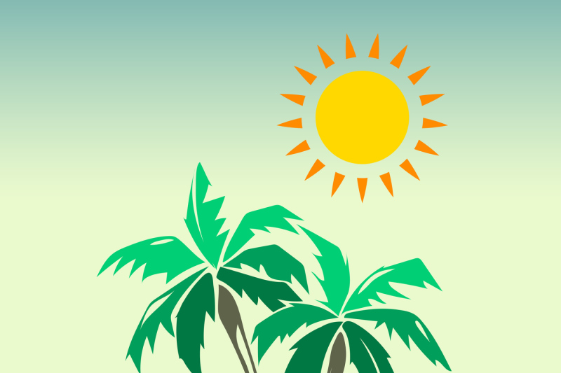 Palm Trees And Sun Design Elements By Microvector Thehungryjpeg Com