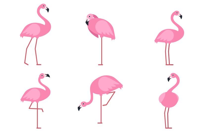 Cartoon pictures of exotic pink bird flamingo. Vector ...