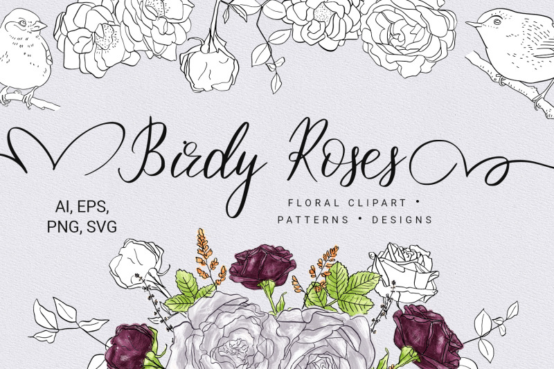 Birdy Roses Collection By Zzorna Art Thehungryjpeg Com