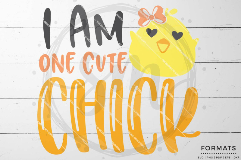 One Cute Chick Easter Svg Files For Cricut By Scribblemoma