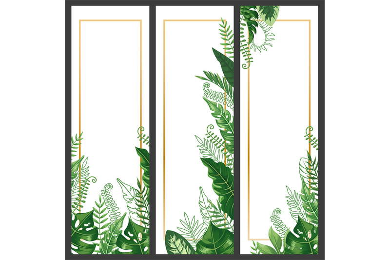 Exotic Leaves Banner Tropical Monstera Leaf Palm Branch And