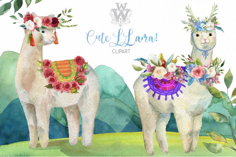 Cute watercolor llama alpaca clipart By WonderWonder ...