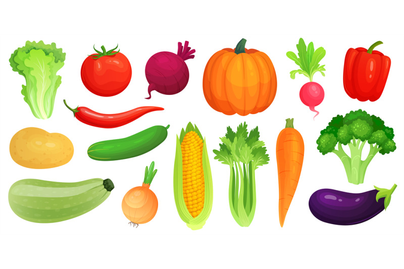 cartoon vegetables  fresh vegan veggies  raw vegetable green zucchini by tartila