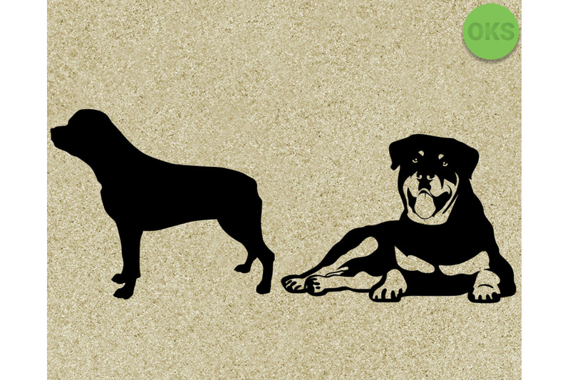 Rottweiler Svg Svg Files Vector Clipart Cricut Download By