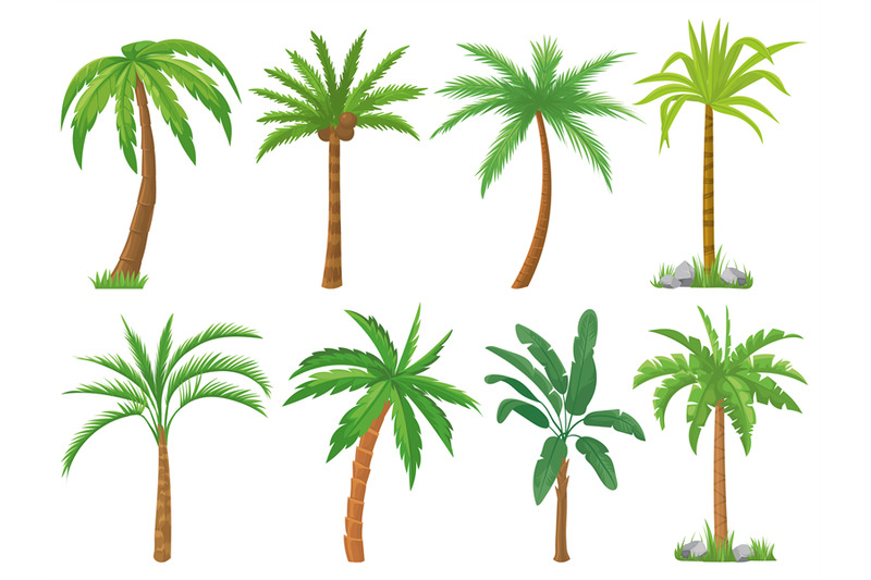 Palm Trees Tropical Tree Green Leaves Beach Palms And Retro