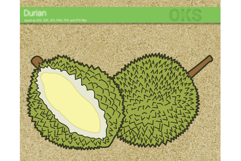 durian svg svg files vector clipart cricut download by crafteroks thehungryjpeg com durian svg svg files vector clipart