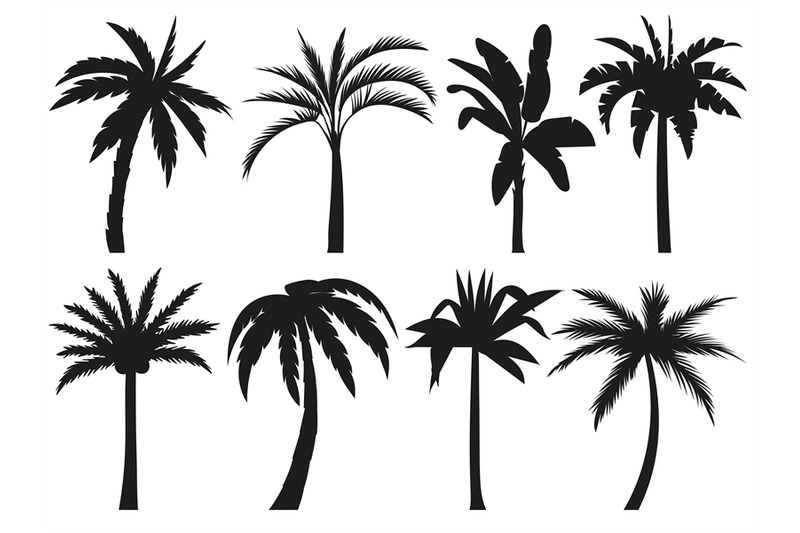 Palm Trees Silhouettes Tropical Leaves Retro Palms Tree And