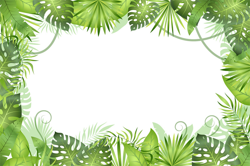 Jungle Background Tropical Leaves Frame Rainforest Foliage Plants G By Yummybuum Thehungryjpeg Com Find over 100+ of the best free tropical leaves images. jungle background tropical leaves