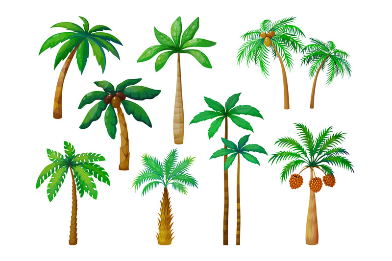 Cartoon Palm Tree Jungle Palm Trees With Green Leaves Coconut