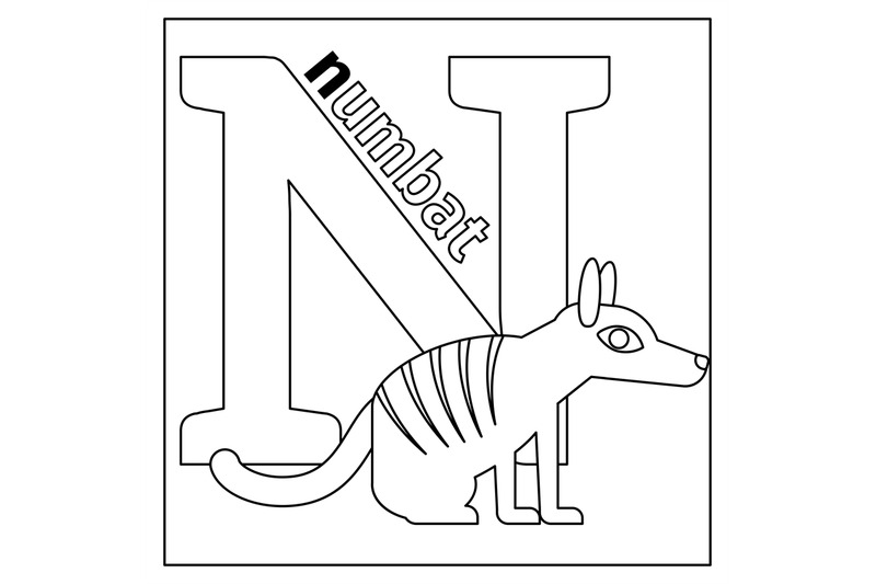 Numbat, Letter N Coloring Page By SmartStartStocker TheHungryJPEG.com