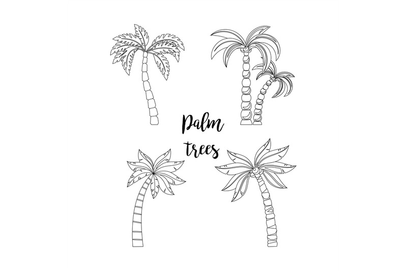 Palm Trees Set For Coloring Book By Smartstartstocker