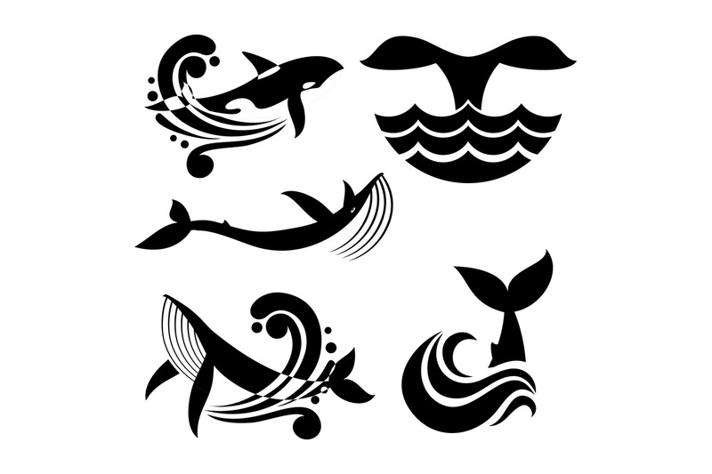 White And Black Wild Whale In Sea Waves And Water Splashes Vector