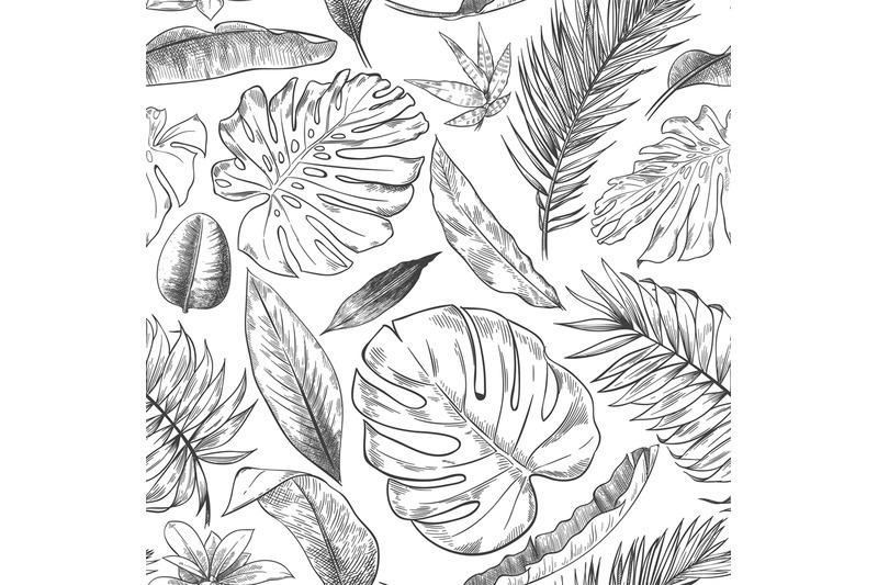 Hand Drawn Tropical Leaves Pattern Sketch Drawing Palm Branch Monste By Tartila Thehungryjpeg Com