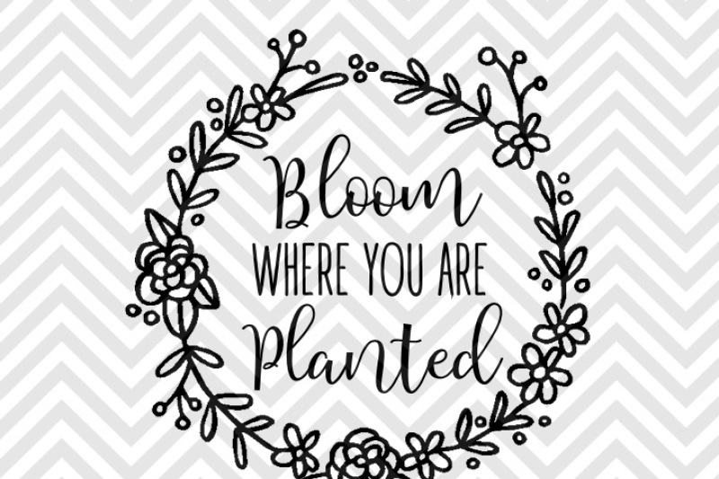 Free Bloom Where You Are Planted Laurel Svg And Dxf Eps Cut File Cricut Silhouette Crafter File Free Svg Cut Files Png Dxf Eps