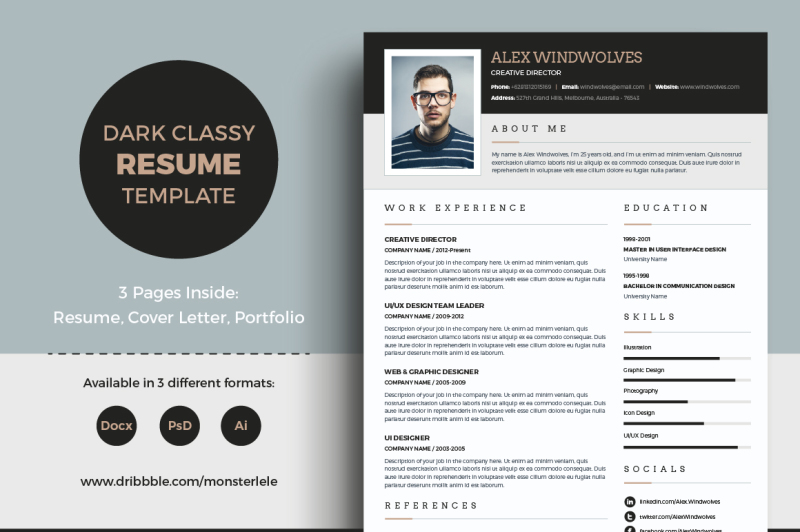 Dark Classy Resume 3 Pages By TemplateOlympus