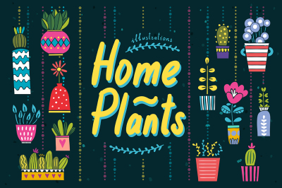 Home Plants Illustrations
