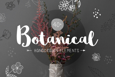 40+ Botanical Hand Drawn Elements