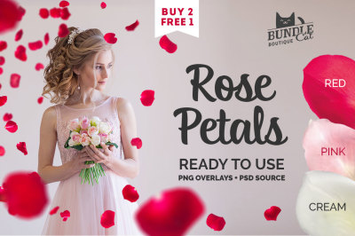 21 Rose Petal Photoshop Overlays