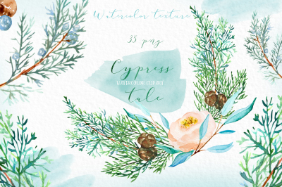 Cypress tale. Watercolor clipart