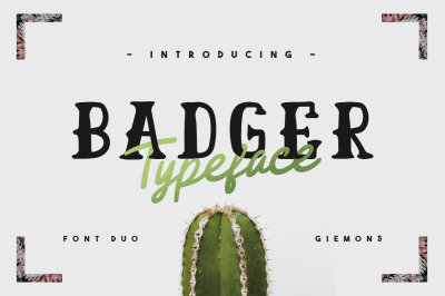 Badger Typeface