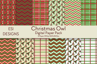 Christmas Owl Digital Paper Pack.