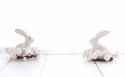 Two white Easter Bunnies in white wood floor