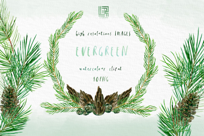 Evergreen. Forest watercolour collection. Winter forest elements ,