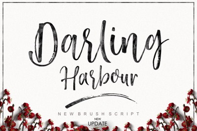 Darling Harbour Brush
