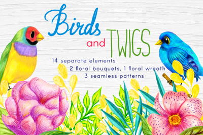 Birds & Twigs