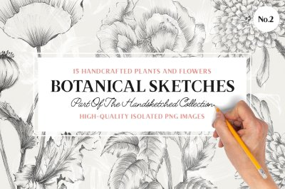 15 Handcrafted Flower Illustrations