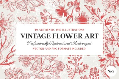 40 Plant & Flower Illustrations No.5