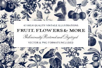 63 Fruit & Flower Illustrations