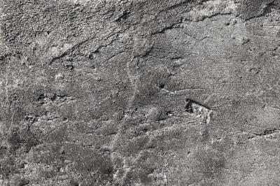 Rough Concrete Wall Texture