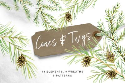 Cones & Twigs. Watercolor