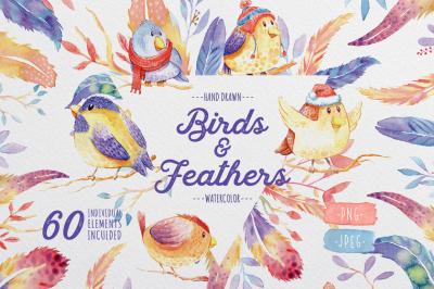 Birds& Feathers