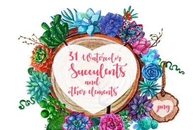 Watercolor Succulent Plants clipart