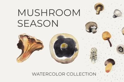 Watercolor MUSHROOM SEASON