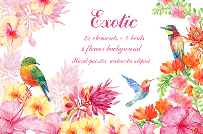 set of exotic flowers and birds