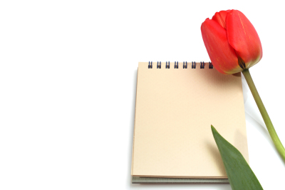 tulip flower with notebook