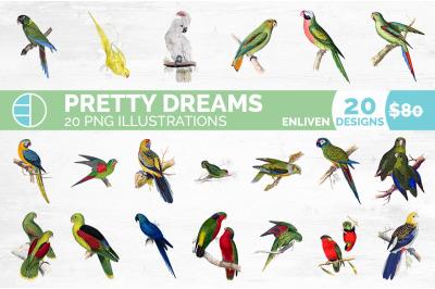Parrot Bundle (20 Birds)