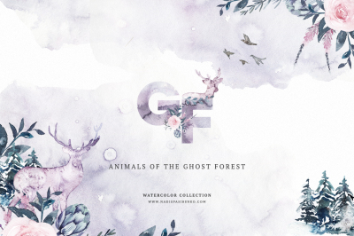 Animals of the Ghost Forest