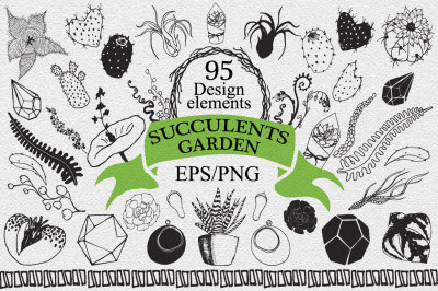 Succulents and cactus garden Vector Hand drawn design elements