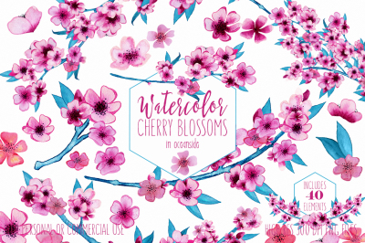Pink Watercolor Floral Wedding Sakura Flower Graphics