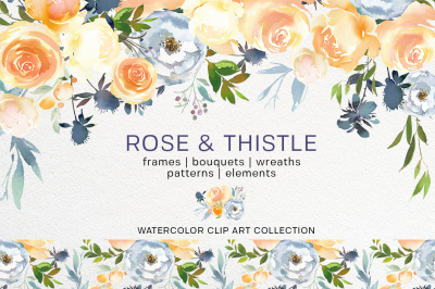 Peach Roses White Peonies Blue Thistle Watercolor Clipart Collection